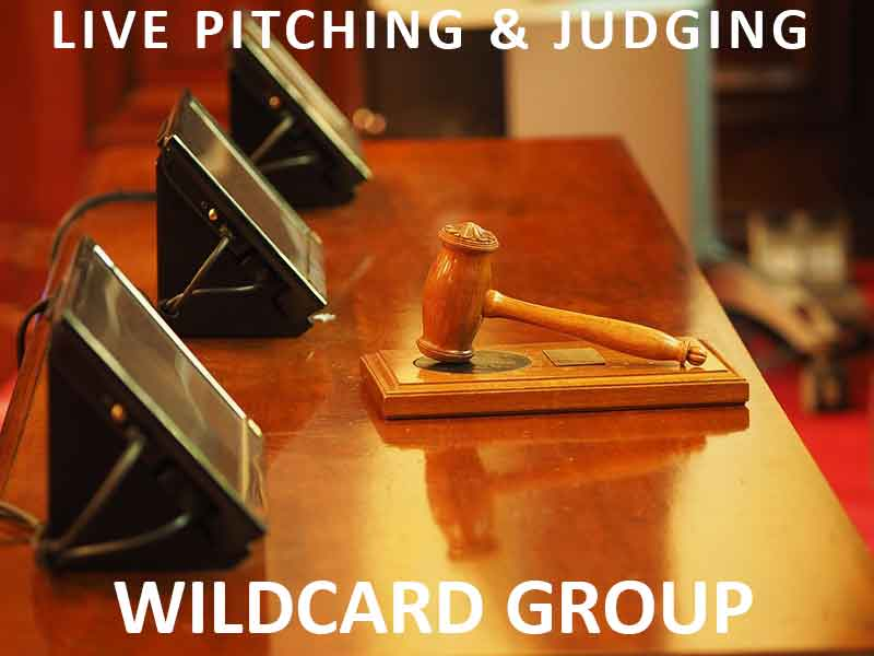 Live-Judging-Wildcard-Group